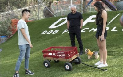 """Cesar Millan Returns to National Geographic with 10-Part Series """"Cesar's Way"""" Premiering in August"""