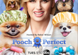 """ABC's """"Pooch Perfect"""" Will Have a Fan Event in Both Los Angeles and Orlando Starting March 20"""
