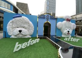 """Photos/Video: """"Pooch Perfect"""" Fan Event Promotes Upcoming ABC Series with Interactive Experience"""