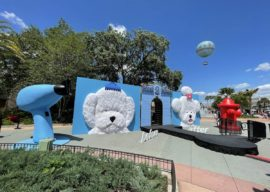 """ABC's """"Pooch Perfect"""" Fan Event Makes Its Way to Disney Springs"""