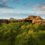 Disney's Animal Kingdom Lodge to Accept Bookings Starting Tomorrow For August Reopening